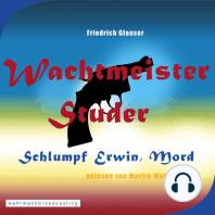 Wachtmeister Studer - Schlumpf Erwin, Mord