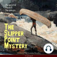 The Slipper Point Mystery