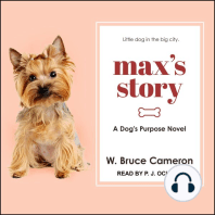 Max's Story