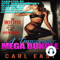 A Transgender Mega Bundle