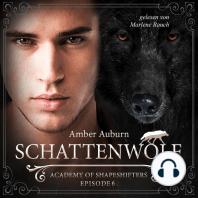 Schattenwolf, Episode 6 - Fantasy-Serie