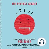 The Perfect Secret