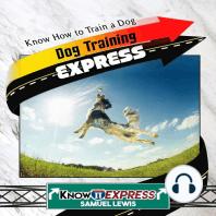 Dog Training Express