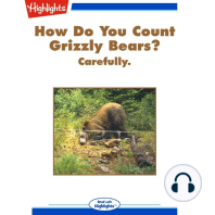 How Do You Count Grizzly Bears?