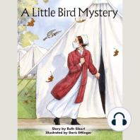 A Little Bird Mystery