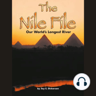 The Nile File