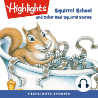 Squirrel School and Other Real Squirrel Stories