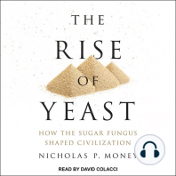 The Rise of Yeast