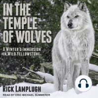 In the Temple of Wolves