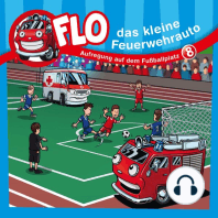 Aufregung auf dem Fußballplatz (Flo, das kleine Feuerwehrauto 8)