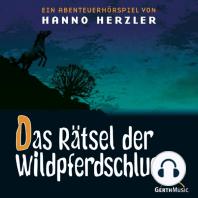 Das Rätsel der Wildpferdeschlucht (Wildwest-Abenteuer 13)