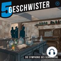 Die Symphonie des Schreckens (5 Geschwister 23)