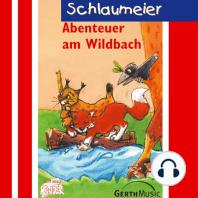 Abenteuer am Wildbach (Schlaumeier 4)