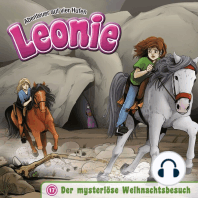 Der mysteriöse Weihnachtsbesuch (Leonie - Abenteuer auf vier Hufen 17)