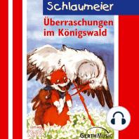 Überraschungen im Königswald (Schlaumeier 3)