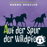Auf der Spur der Wildpferde (Wildwest-Abenteuer 1)