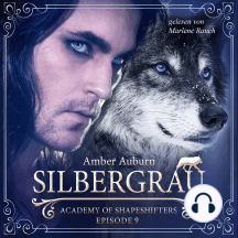 Silbergrau, Episode 9 - Fantasy-Serie: Academy of Shapeshifters