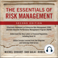 The Essentials of Risk Management: Second Edition