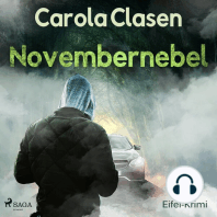 Novembernebel - Eifel-Krimi