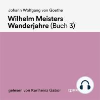 Wilhelm Meisters Wanderjahre (Buch 3)
