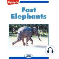 Fast Elephants