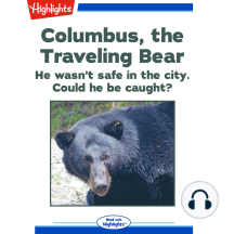 Columbus, the Traveling Bear: He wasn't safe in the city. Could he be caught?