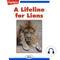 A Lifeline for Lions