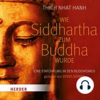 Wie Siddhartha zum Buddha wurde