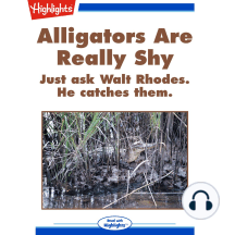 Alligators Are Really Shy: Just ask Walt Rhodes. He catches them.