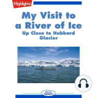 My visit to a river of ice
