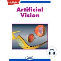 Artificial Vision