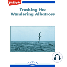 Tracking the Wandering Albatross