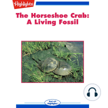 The Horseshoe Crab