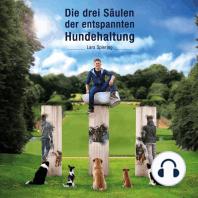 Die drei Säulen der entspannten Hundehaltung