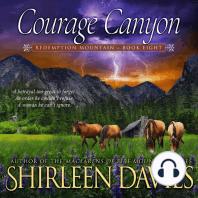 Courage Canyon