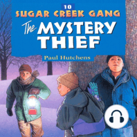 The Mystery Thief