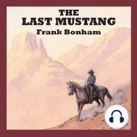 The Last Mustang