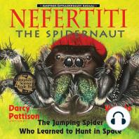 Nefertiti, the Spidernaut