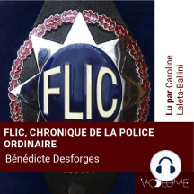 Flic: Chroniques de la police ordinaire