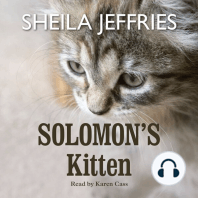 Solomon's Kitten