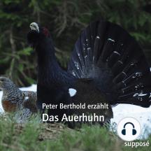 Das Auerhuhn: Peter Berthold erzählt
