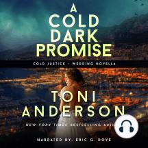 A Cold Dark Promise: FBI Romantic Suspense