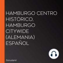 Hamburgo Centro Histórico, Hamburgo CityWide (Alemania) Español