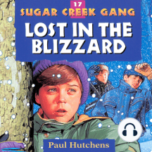 Lost in the Blizzard: Sugar Creek Gang, Book 17