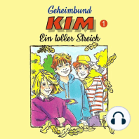 Geheimbund KIM, Folge 1