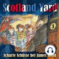 Scotland Yard, Folge 3