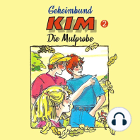 Geheimbund KIM, Folge 2