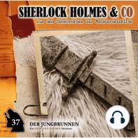 Sherlock Holmes & Co, Folge 37