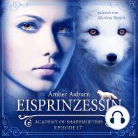 Eisprinzessin, Episode 17 - Fantasy-Serie