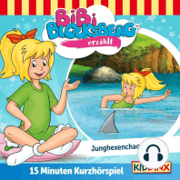 Bibi Blocksberg Kurzhörspiel - Bibi erzählt